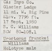 Image of Uroctonus franckei