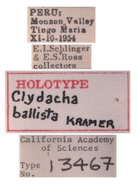 Clydacha ballista image